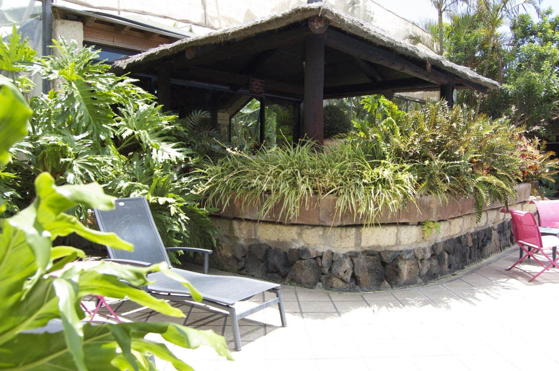 Casas de piedra i casas rurales en tenerife san miguel for Casas rurales tenerife sur piscina