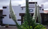 Holiday Cottage El Picacho E, Tenerife
