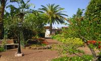 Holiday Cottage El Picacho D, Tenerife